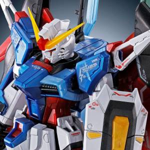 RG 1/144  Destiny Gundam Titanium Finish Plastic Model Limited Edition [Bandai]