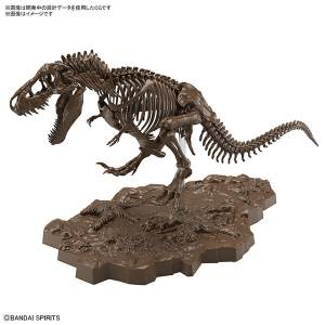 1/32 Imaginary Skeleton Tyrannosaurus Plastic Model [Bandai]