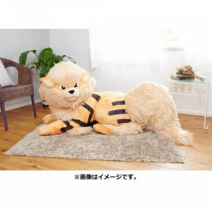 Pokemon - Arcanine (Windie) - Bed Sharing LIMITED EDITION [Plush Toy]