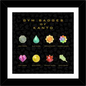 Pokemon Red & Green - Gym Badges of Kanto Collection Complete Set Pokemon Center Limited Edition [Goods]