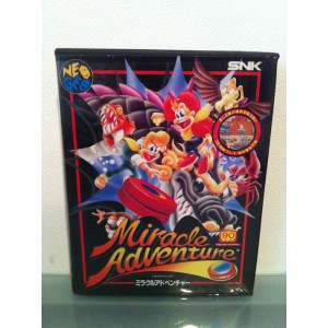 Miracle Adventure / Spin Master [NG AES - Used Good Condition]