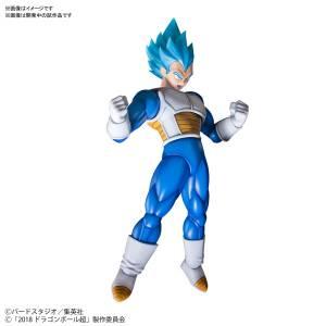 Dragon Ball Super Broly - Super Saiyan God Super Saiyan Vegeta (Special Color) [Figure-rise Standard]