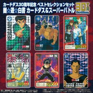 Carddass 30th Anniversary - Best Selection Set Yū Yū Hakusho Super Battle Ver. [Trading Cards]