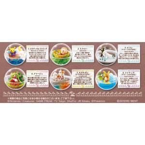 Pokemon Sun & Moon Terrarium Collection EX -Alola Region Vol.2 - 6 Pack BOX  [Goods]